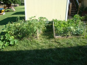 our two new raised beds!!!